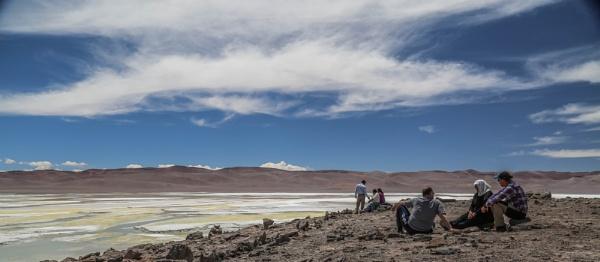 Salt Flats Atacama Desert by mammarazzi