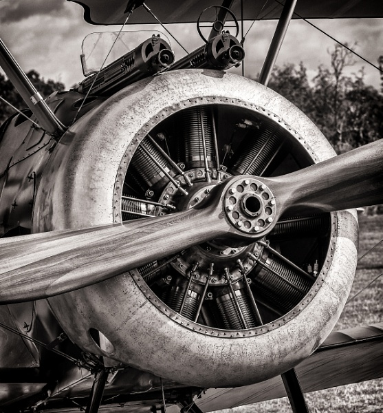 Sopwith by ChrisBanks