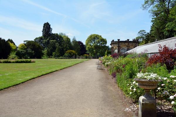 In The Garden  3 by gwynn56