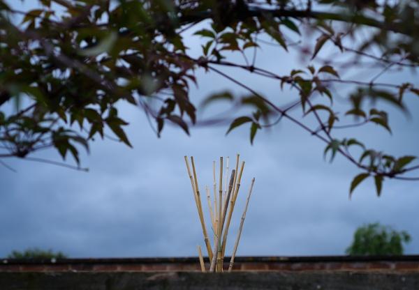 A Wigwam? by Nikonuser1