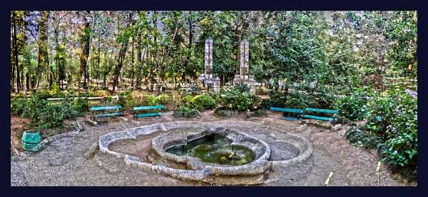 Psychedelic park by nklakor