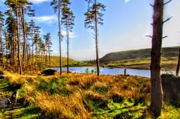 Upper lliw reservoir
