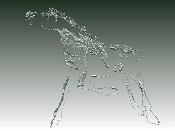 horse by Danas