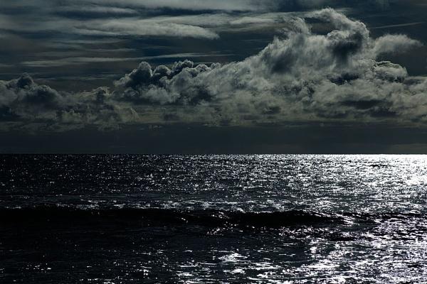 Windswept #2 by DianneKG