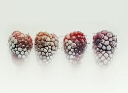 Frozen Loganberries