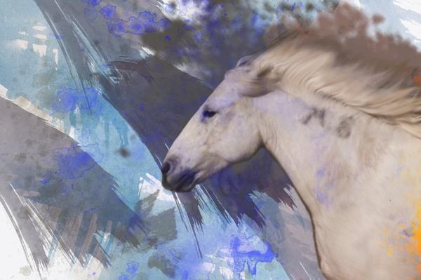 Painterly Horse by Msalicat