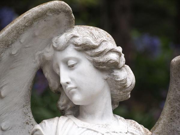 Garden Angel by fredsphotos