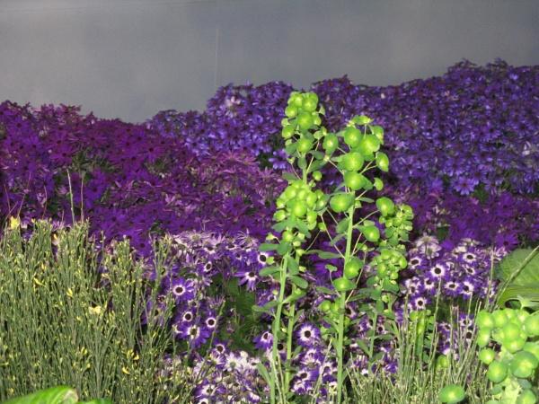 purple dream by Ellenismyname65