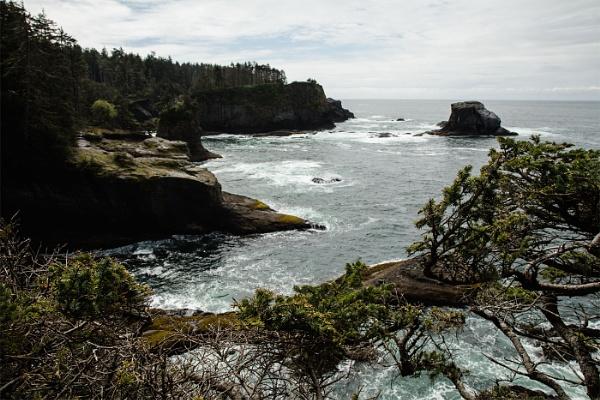 Cape Flattery, Washington by Janetdinah