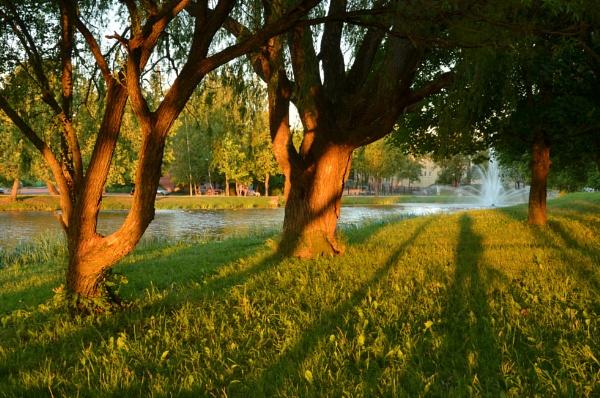 Fountain by Zenonas
