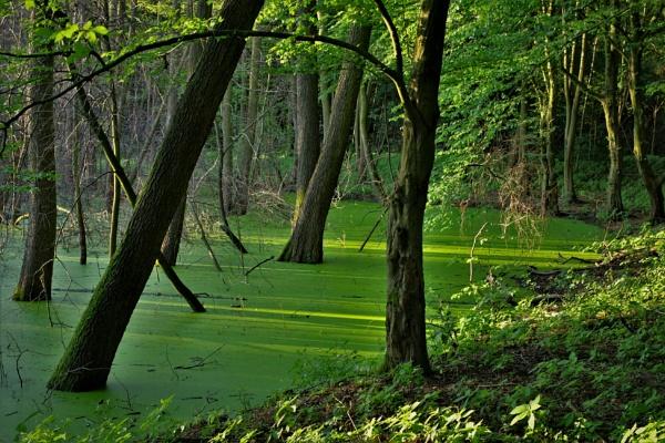 Jade-Green Lake by PentaxBro