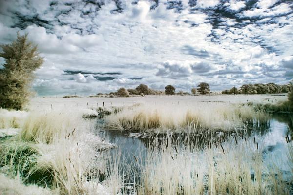 Farm pond.IR by frenchie44