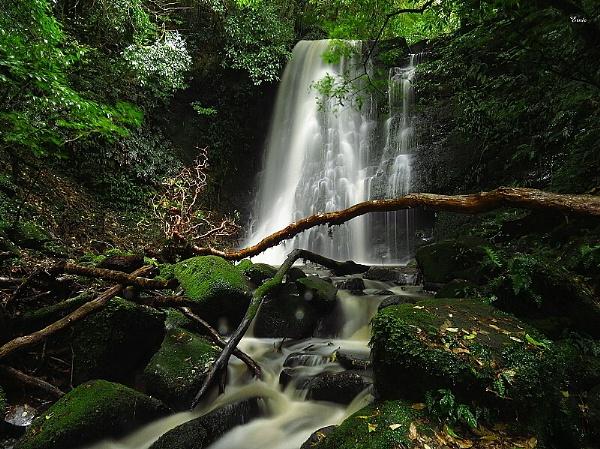 Matai Falls 1 by DevilsAdvocate