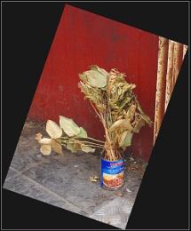 Warhol Inspired Vase