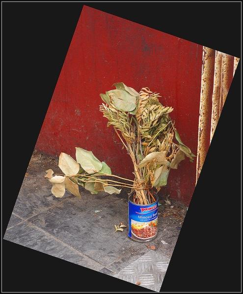 Warhol Inspired Vase by jcolind