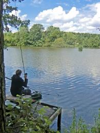 A lone Fisherman at Langold Lake, landing his catch.