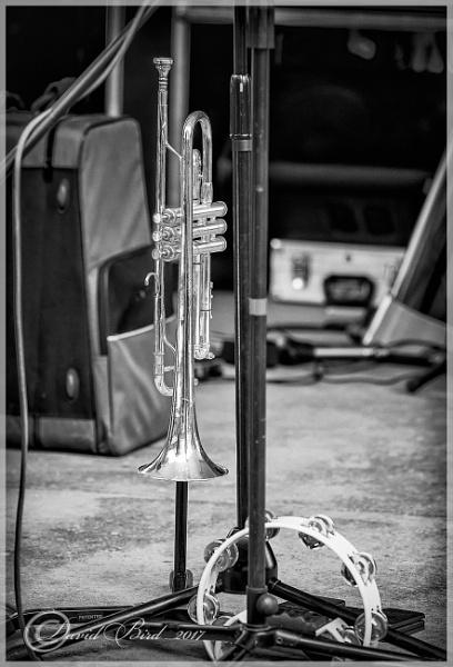 The Trumpet by DavidBird