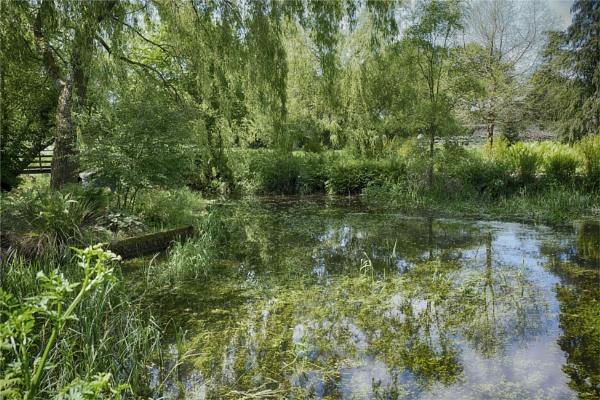Village pond by tedtoop