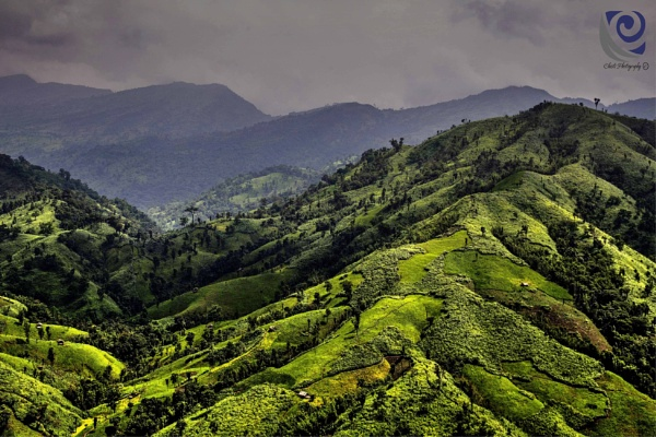 Beauty of Hill Tracts  by chisti28bd