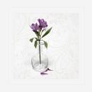 Lilies in vase by deavilin