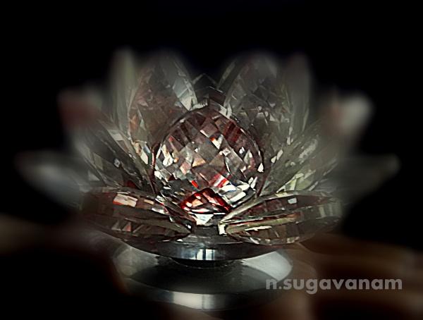 crystal Lotus by sugavanam