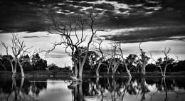 Skeleton Crew, Warren, NSW