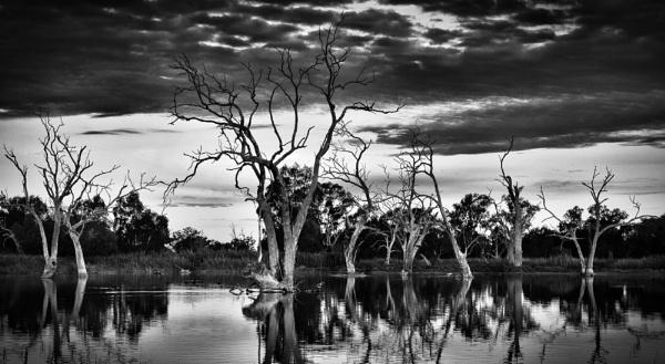 Skeleton Crew, Warren, NSW  by BobinAus