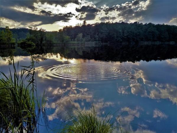 FOREST - LAKE RHAPSODY by PentaxBro