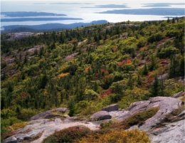 Cadillac Mountain