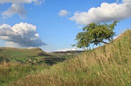 Mount Pleasant looking towards Alderman