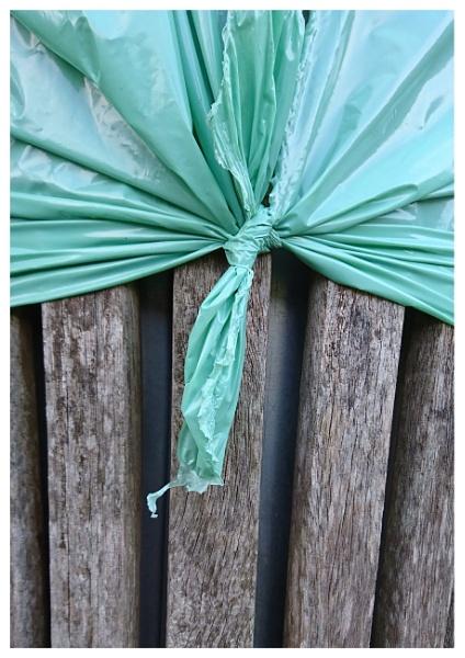 A neatly wrapped Roath Park bin. by notsuigeneris
