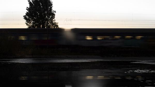 Dawn by MileJanjic