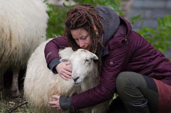 Love Ewe, Always Will, Whispered The Vegetarian Artist :-) by SocksAndStuff