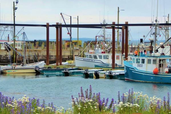Ingall\'s Head Harbor by Joline