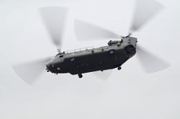 RAF Chinook HC4