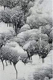 The Japanese landscape