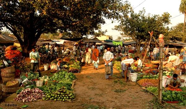 Village Vegetable Market by debu