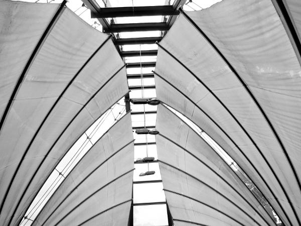 Kew 1 by Drighlynne