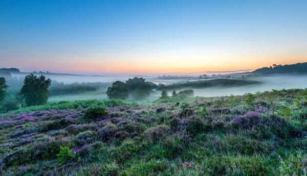 Misty Dawn by NickLucas