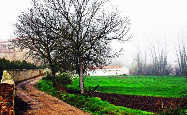 Tierras de abadengo. by femape