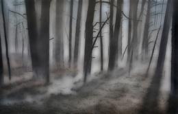 Tanglewood  Mist