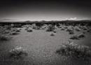 Mohave Desert by Stephen_B