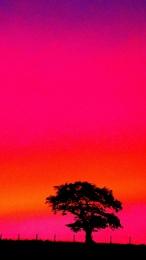 Sunset No.2