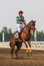 Skillful Horsemanship by WorldInFocus