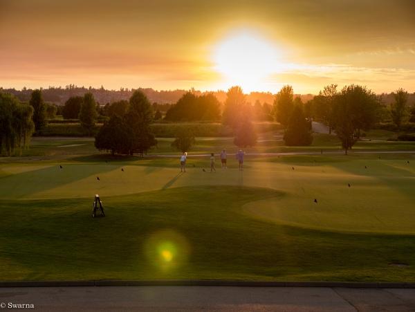 Golfing in the Sun by Swarnadip