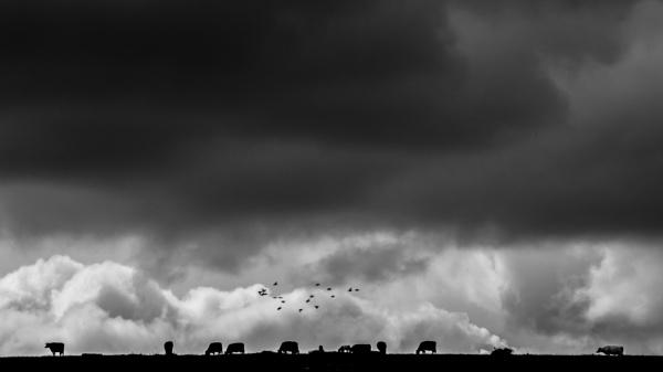 Beneath a threatening sky by GoranErfani
