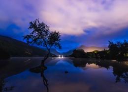 Lone Tree, Llyn Padarn V