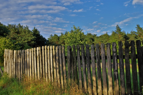 The Fence by PentaxBro