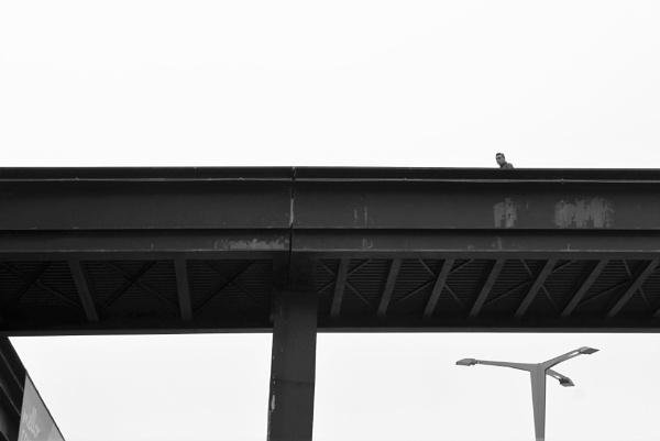 Man on a footbridge, Vigo, Galicia by tonycullen