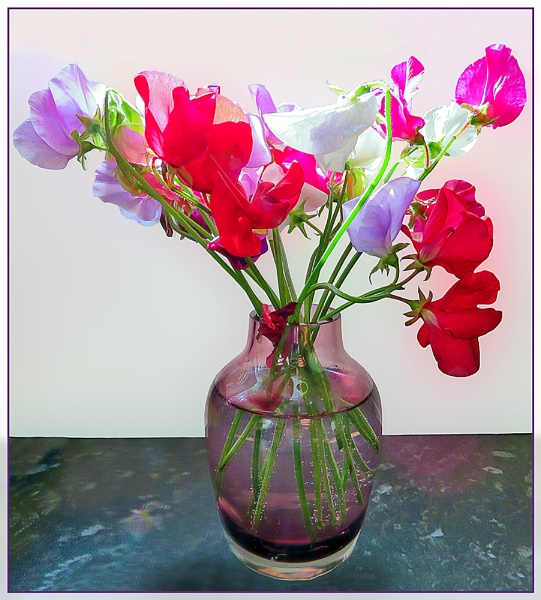 Sweet Peas by Sylviwhalley